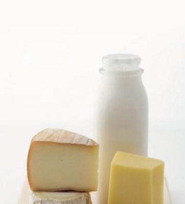 Rührwerk Anwendungsbereiche Milchprodukte